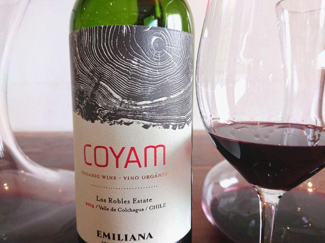 高コスパだけじゃない! 今のチリワインの世界がわかる、プロ絶賛の素晴らしき「チリワイン」4選