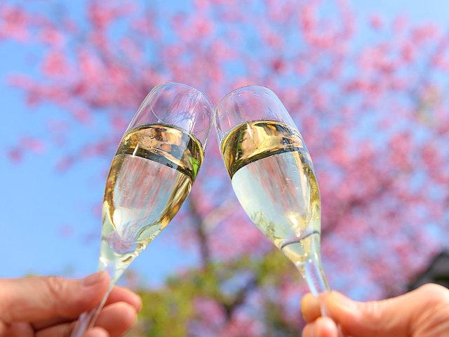 花見のお酒は断然「ロゼ泡」が大ウケ! シャンパーニュ騎士団オフィシエが絶賛すすめる「ロゼ泡」3選