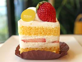 ふわっととろけるショートケーキが絶品!『モンサンクレール』出身パティシエが開いた超話題のスイーツ店