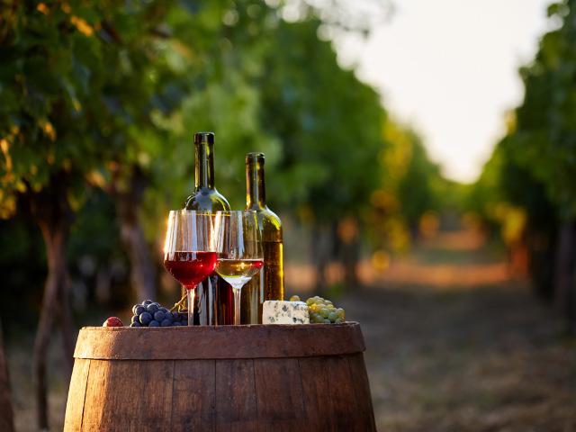 フランスの「三大 ロゼ」って知ってる?  ワインと旅する【ツール・ド・フランス】