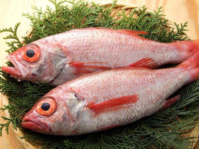 脂ノリノリ! みんなが食べたい食材は「赤くて黒い」魚でした