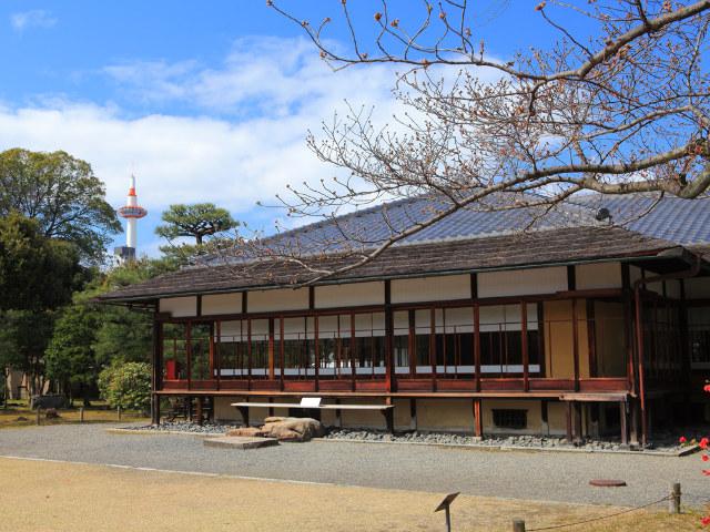料理、お茶、芸舞妓―― 京都の春を五感で味わう1日だけの饗宴「春の京文化の世界へ」開催